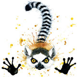 Funny lemur watercolor. Splash textured background stock illustration