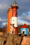 Funny light keeper at park of lighthouses, Finland, Kotka. Dog playing on a rock at a park royalty free stock photography