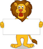 Funny lion Royalty Free Stock Photography