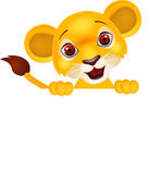 Funny lion with blank sign Royalty Free Stock Photography