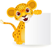 Funny lion with blank sign Royalty Free Stock Photo