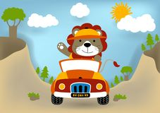 Funny lion cartoon on car royalty free illustration