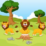 Funny lion cartoon Stock Photos