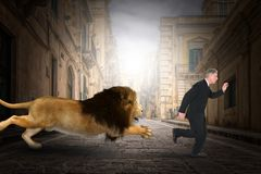 Free Funny Lion Chase Businessman, City Royalty Free Stock Image - 161557596