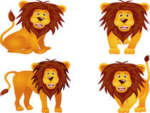 Funny lion collection Stock Photo