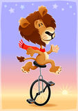 Funny lion on a monocycle Stock Photo
