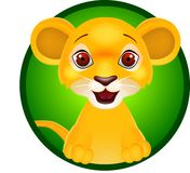 Funny lion smiling Royalty Free Stock Photography