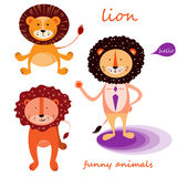 Funny lion. Royalty Free Stock Photography