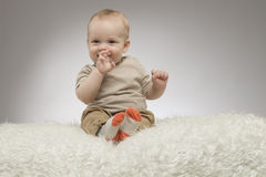 Funny little baby boy with fingers in the mouth, sitting on the white blanket, studio shot, isolated on grey background Stock Photography