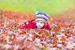 Funny little baby girl with colorful red autumn leaves Stock Images