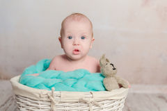 Funny little baby sitting in basket Stock Image