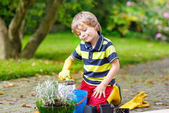 Funny little boy gardening and planting flowers in home's garden Royalty Free Stock Photos