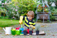 Funny little boy learning to plant flowers in home's garden. Or farm, on warm sunny day. Outdoors. Environment concept Royalty Free Stock Photography