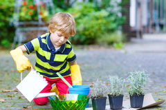 Funny little boy planting flowers in home's garden Stock Photos