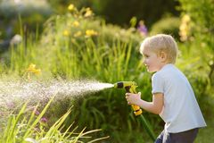 Funny little boy playing with garden hose in sunny backyard royalty free stock photography