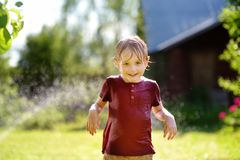 Funny little boy playing with garden sprinkler in sunny backyard. Preschooler child having fun with spray of water. Summer outdoors activity for kids royalty free stock photo