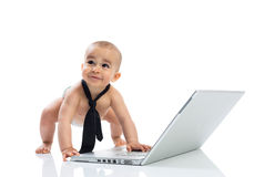 Funny little cute baby businessman with computer Royalty Free Stock Photo