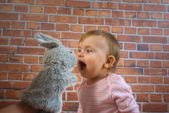 Funny little cute baby girl in pink playing with rabbit on mother hands Royalty Free Stock Images