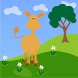 Funny little donkey on flower field Stock Photo
