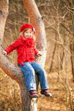 Funny little girl sitting in a tree Stock Photography