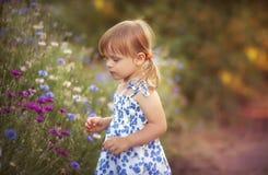 Summer little girl Stock Photography