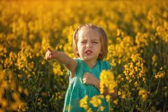 Funny little girl walking in the field of yellow flowers in a sunny summer day Royalty Free Stock Image