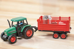 Funny little hamsters ride on toy tractor. Stock Image