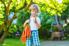 Funny little kid boy with carrots in domestic Royalty Free Stock Photography