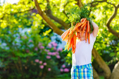 Funny little kid boy with carrots in domestic Royalty Free Stock Image