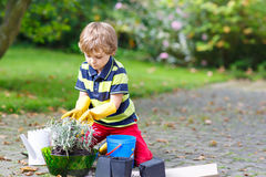 Funny little kid boy planting flowers in garden on sprinig Royalty Free Stock Images