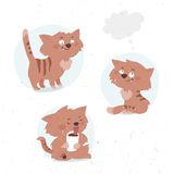 Funny little kitty drinks cocoa Royalty Free Stock Photo