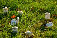 Funny little miniature graves in a grass field Stock Images