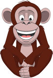 Funny little monkey Royalty Free Stock Photography