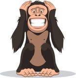 Funny little monkey Royalty Free Stock Photo