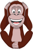 Funny little monkey Royalty Free Stock Photo