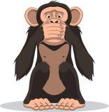 Funny little monkey Royalty Free Stock Photos