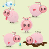 Funny little pig set Stock Image