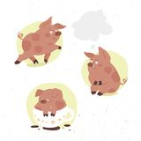 Funny little piggy drinks cocoa Stock Image