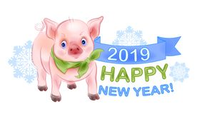 Funny little piggy is the symbol of 2019. New Year design stock image