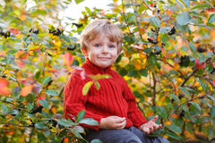 Funny little preschool boy sitting on a wall in late summer even Stock Photo