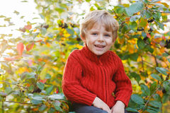 Funny little preschool boy sitting on a wall in late summer even Royalty Free Stock Photo
