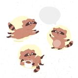 Funny little raccoon drinks cocoa Royalty Free Stock Images