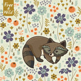 Funny little raccoon Royalty Free Stock Photo