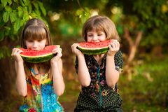 Funny little sisters girl eat watermelon in summer. Healthy eating concept stock photo