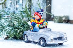 Funny little smiling kid boy driving toy car with Christmas tree. Royalty Free Stock Photo