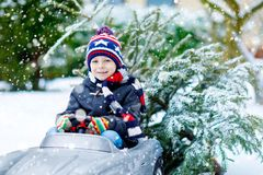 Funny little smiling kid boy driving toy car with Christmas tree. Stock Image