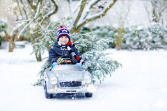 Funny little smiling kid boy driving toy car with Christmas tree. Royalty Free Stock Photography