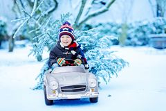 Funny little smiling kid boy driving toy car with Christmas tree. Stock Photos