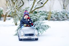 Funny little smiling kid boy driving toy car with Christmas tree. Royalty Free Stock Image