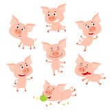 Funny little smiling pig in various poses, cartoon vector illustration. Funny little smiling pig in various poses, set of cartoon vector illustrations  on white Royalty Free Stock Image
